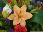 Flores (44)