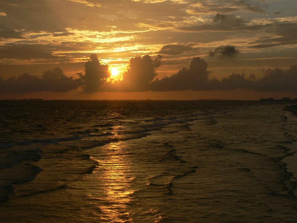 Florida 2008
