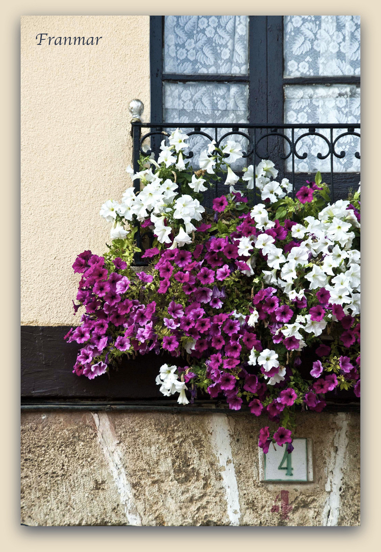 Florido balcón