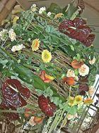 floristischer Raumschmuck -1-