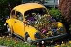 """"""" flower-car """""""