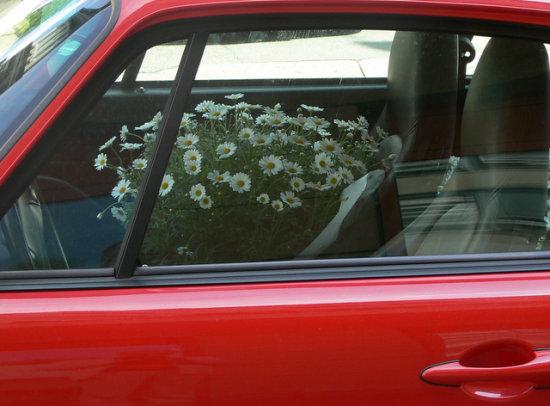 Flower Driver
