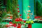 Flower-Festival in Covent Garden-3