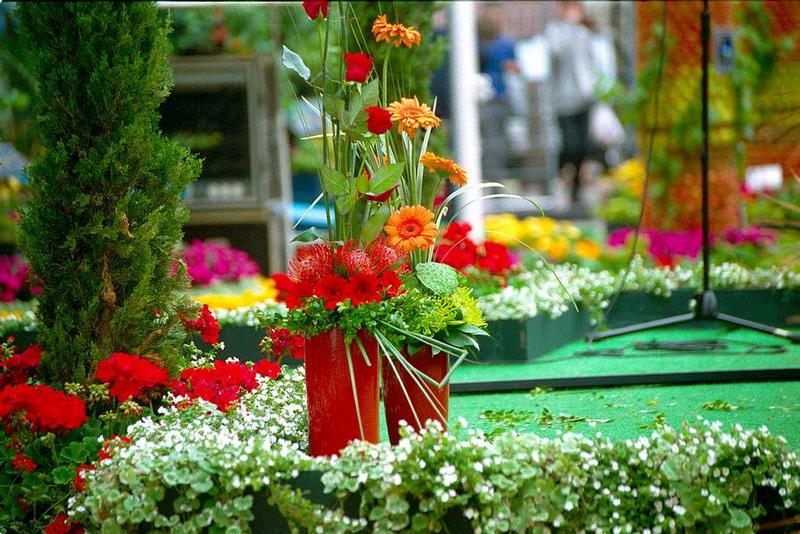 Flower-Festival in Covent Garden-4
