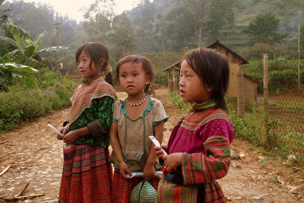 Flower Hmong girls