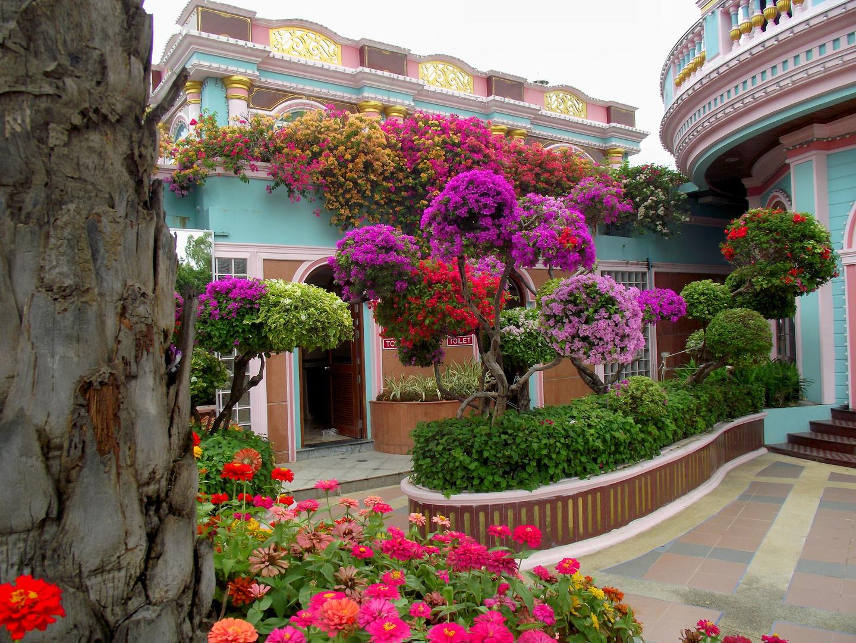 FLOWER-POWER -- Sukhawadee Pattaya
