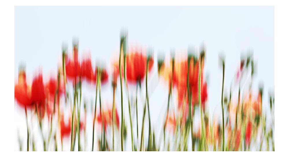 flower_art #65