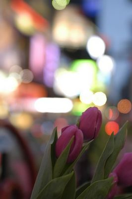 flowers on times square