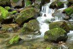 Flowing Water Vogesen