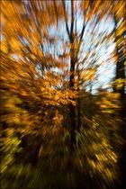 Flucht der Blätter