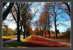 Fluchtpunkt Herbst