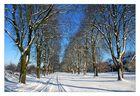 Fluchtpunkt Winter II