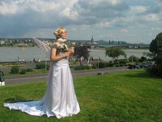 Flügel überm Rhein