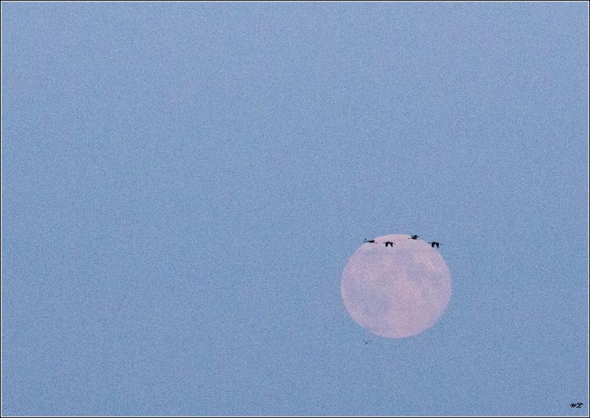 Flug durch den Mond