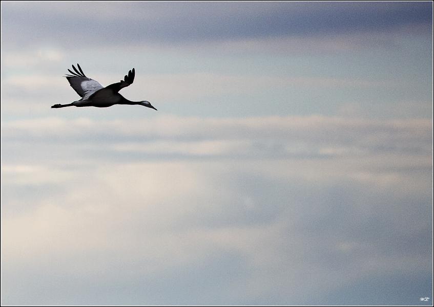 Flug durch die Wolken