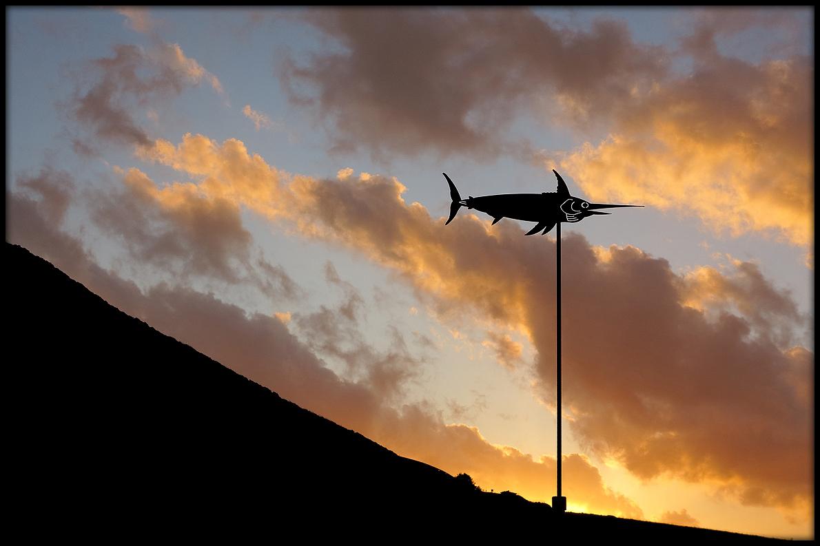 Flug im stürmischen Wolkenmeer / Volo nel burrascoso mare di nubi (1)