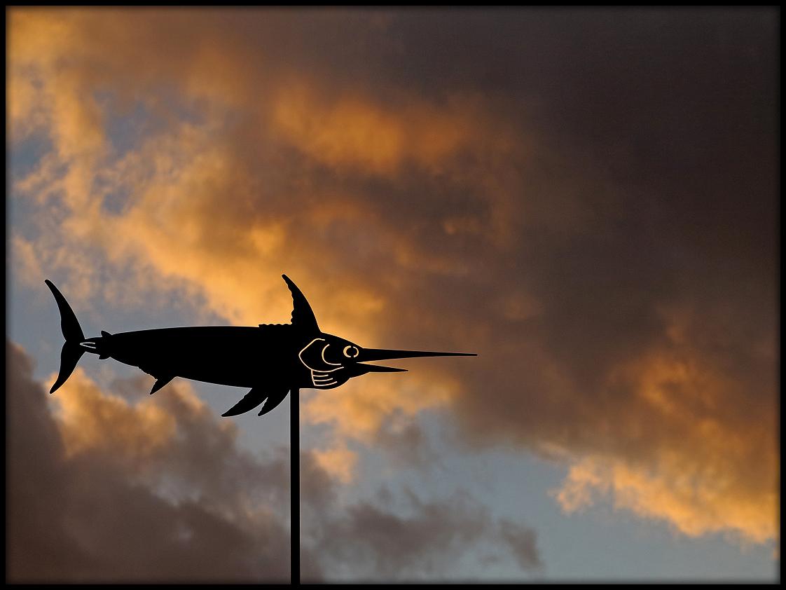 Flug im stürmischen Wolkenmeer / Volo nel burrascoso mare di nubi (2)