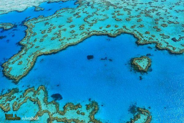 Flug über das Hardy Reef
