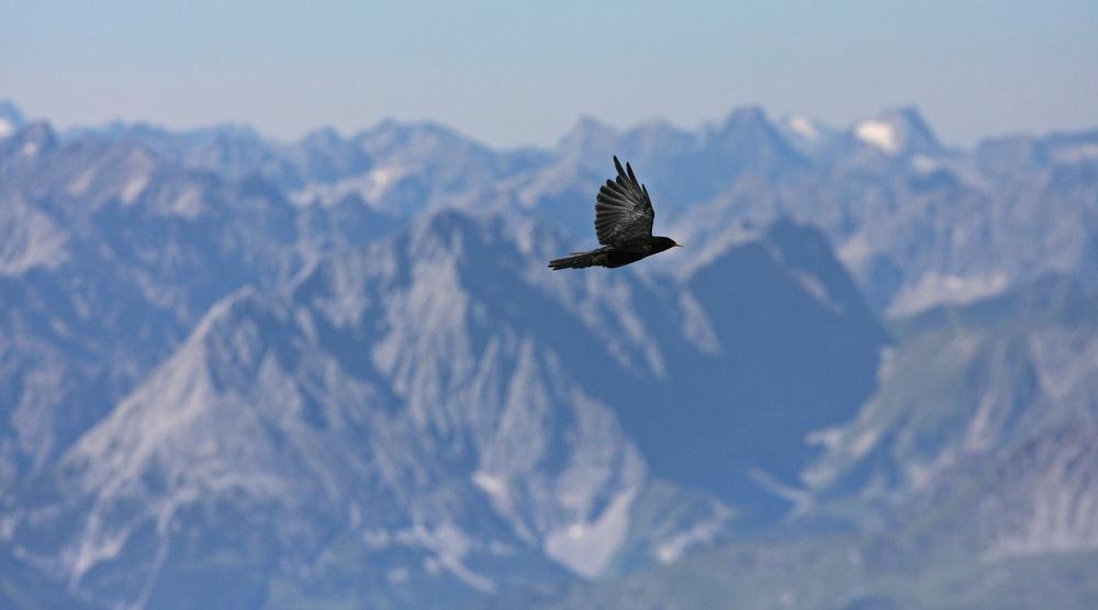 Flug über die Zugspitze