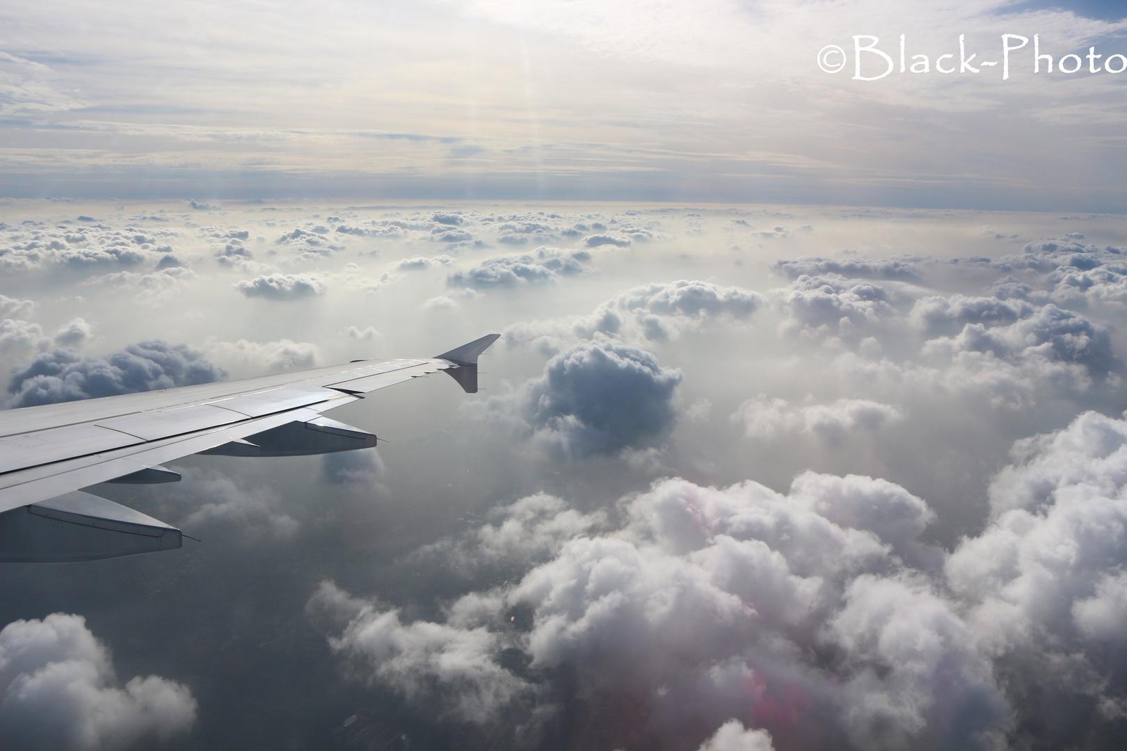 Flug von Palma nach Deutschland