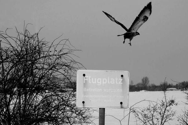 Flugplatz