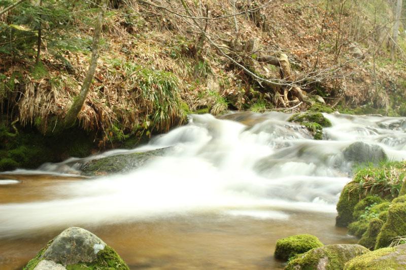 Fluss bei Allerheiligen