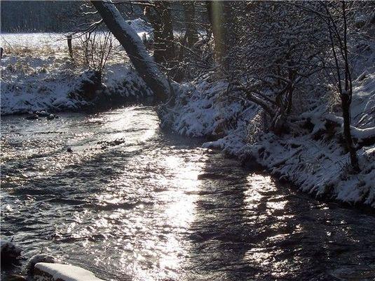 Fluß im Winter