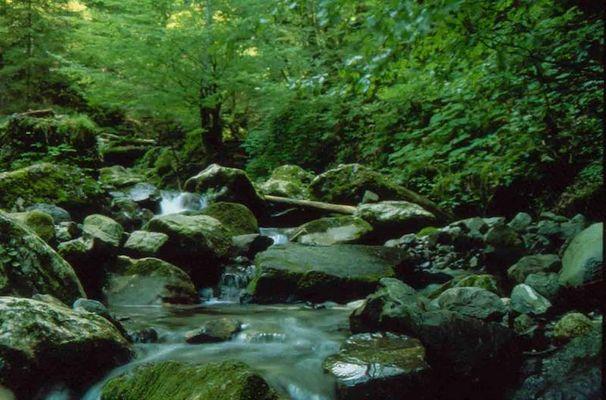 Fluss in der Nähe von Annecy