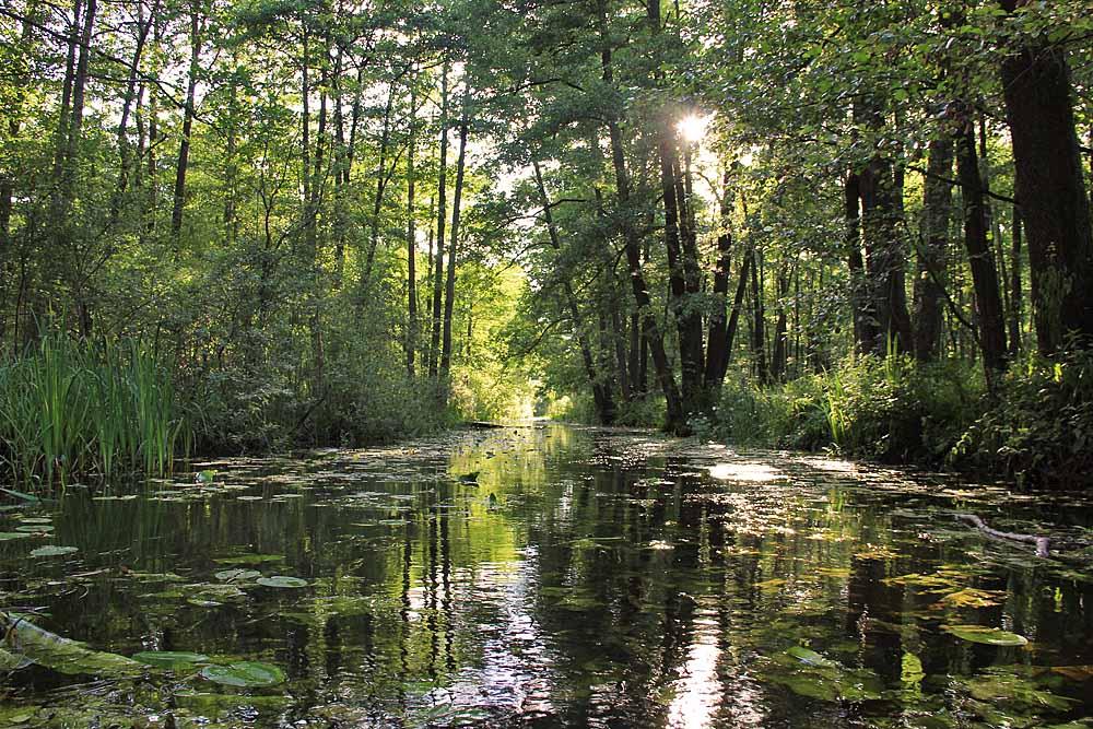 Fluss Stochid