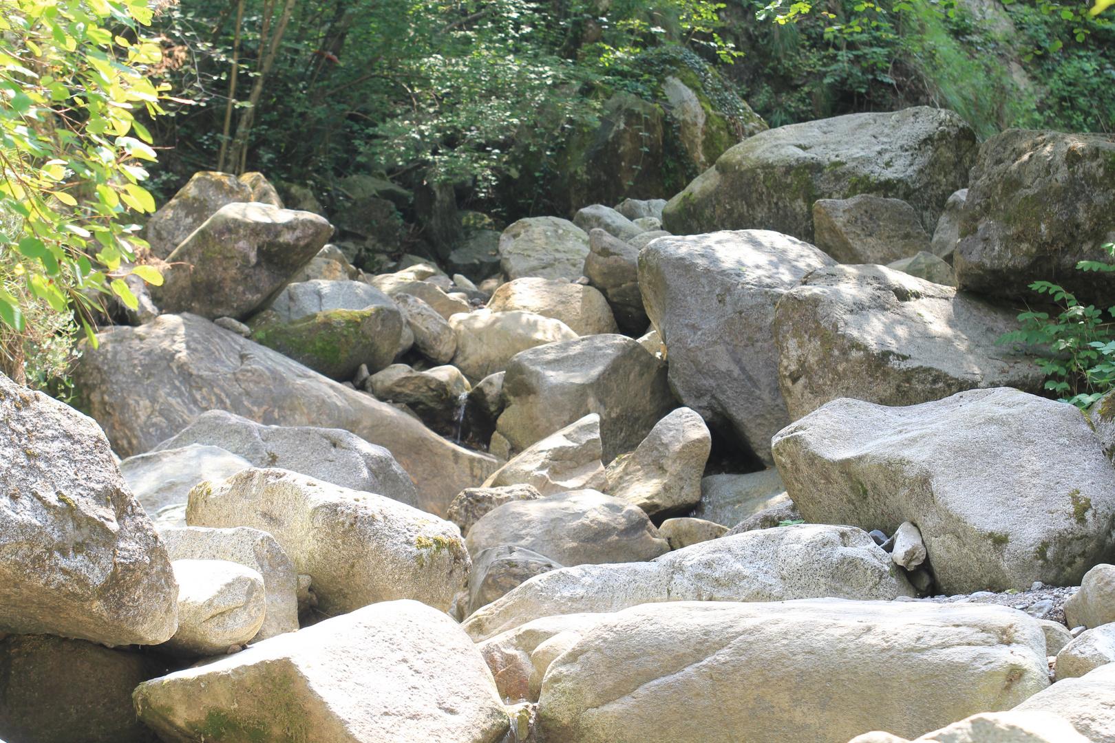 Flussbett 1