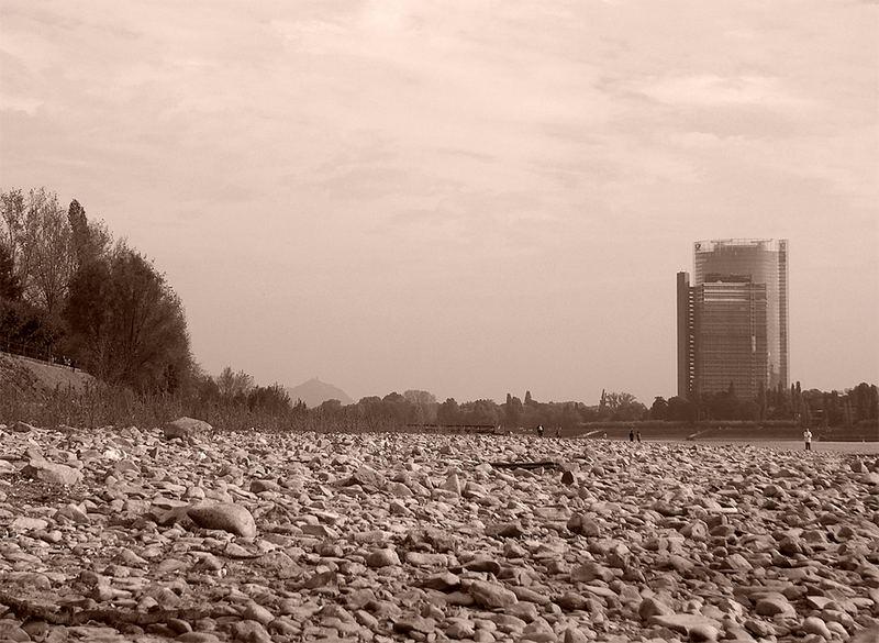 Flussbett des Rheins
