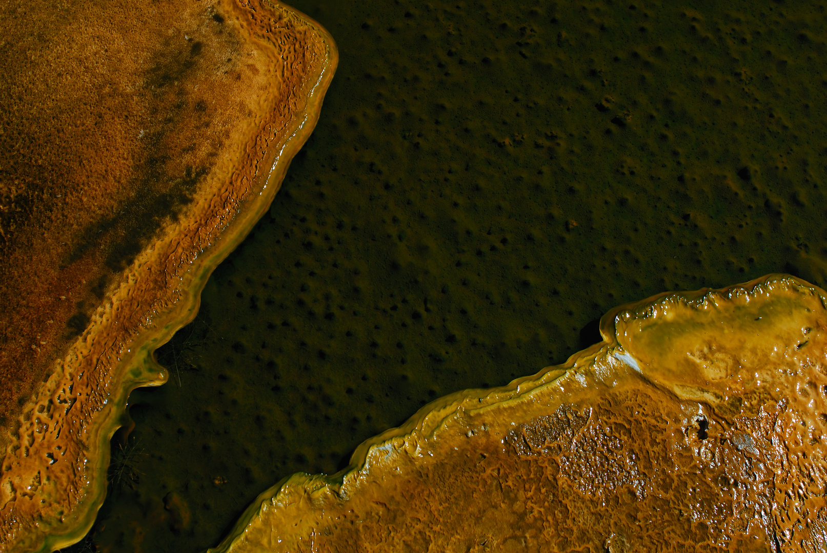 Flußdelta