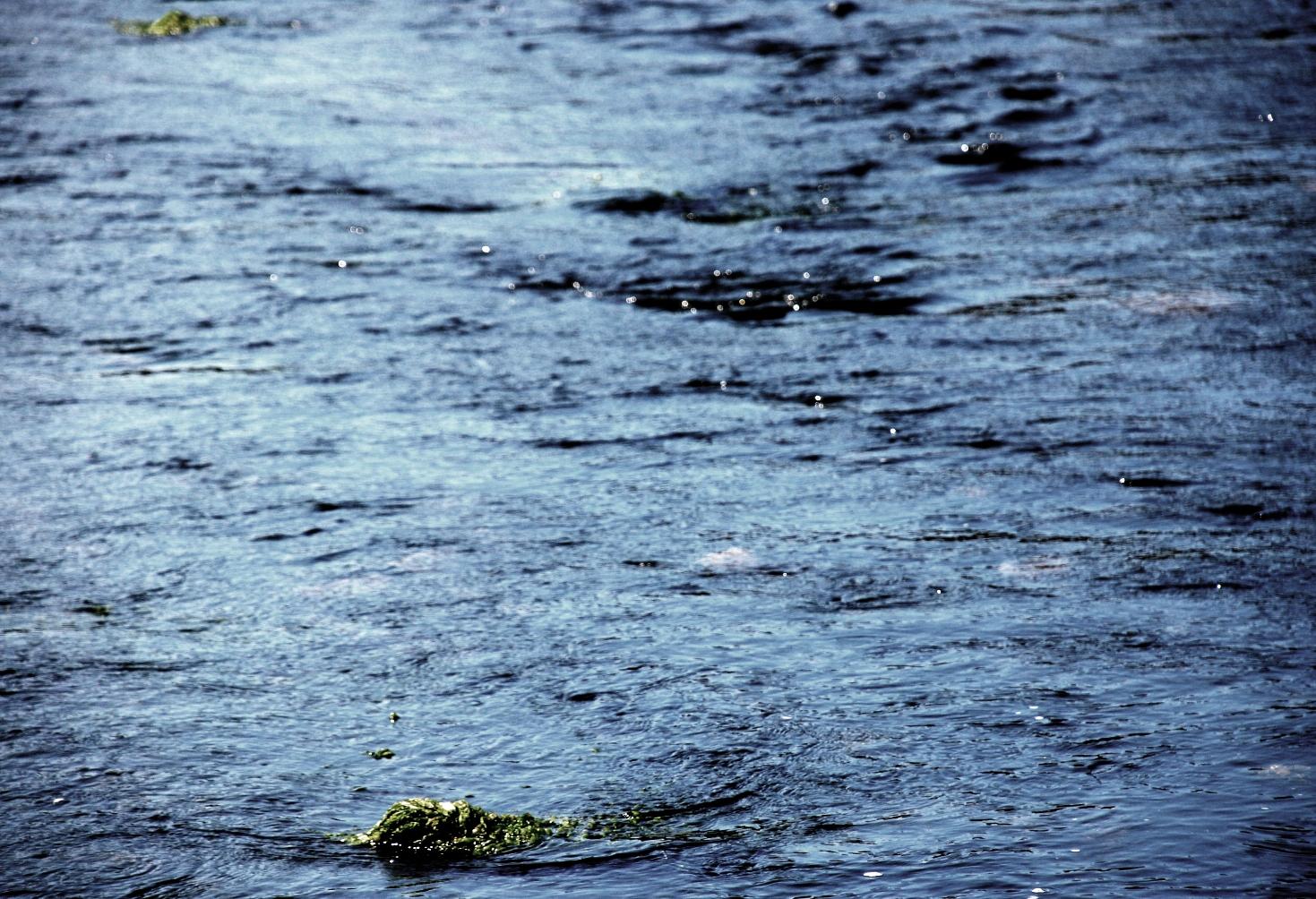 Flussfels