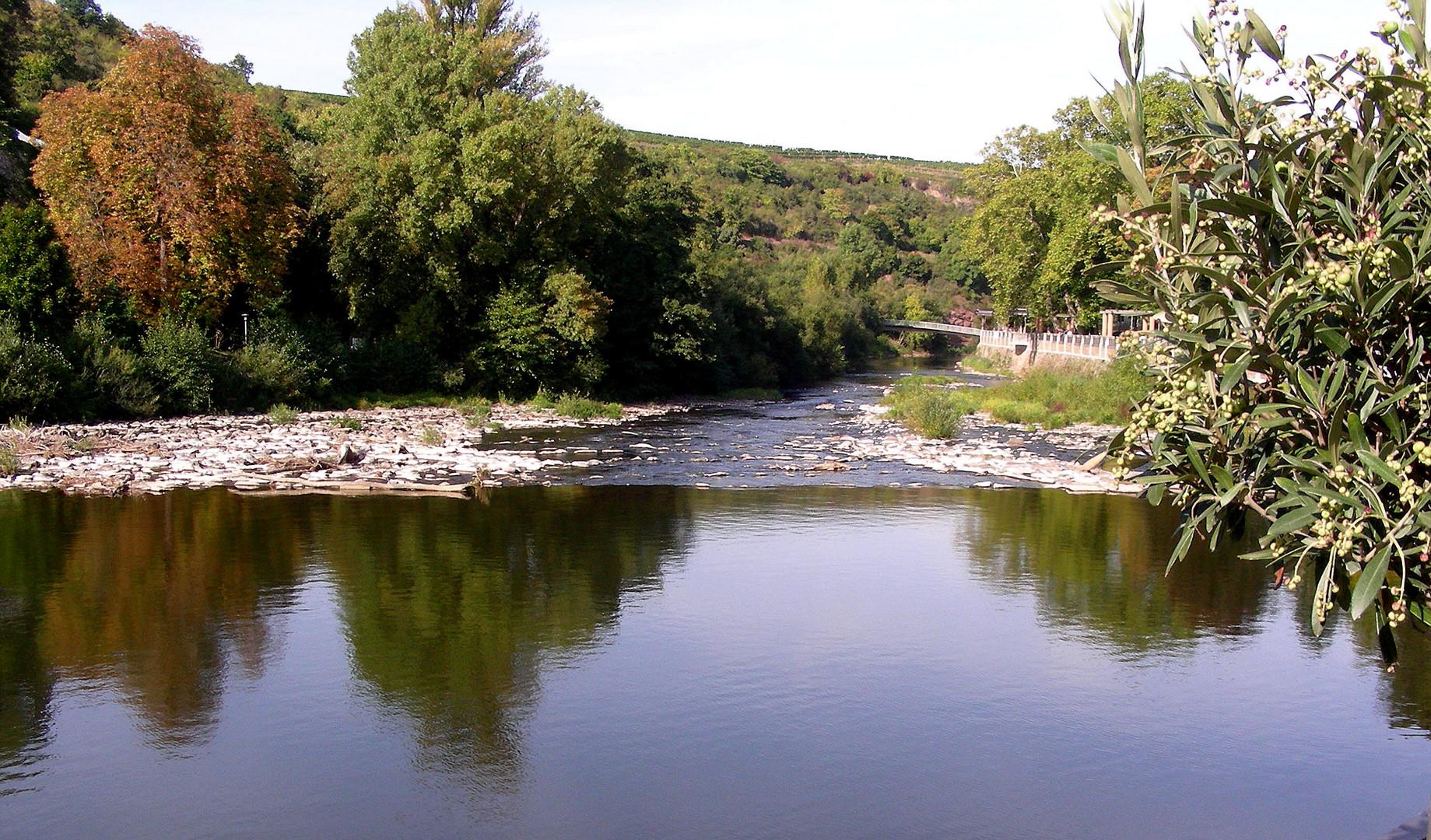 Flusslandschaft (2)