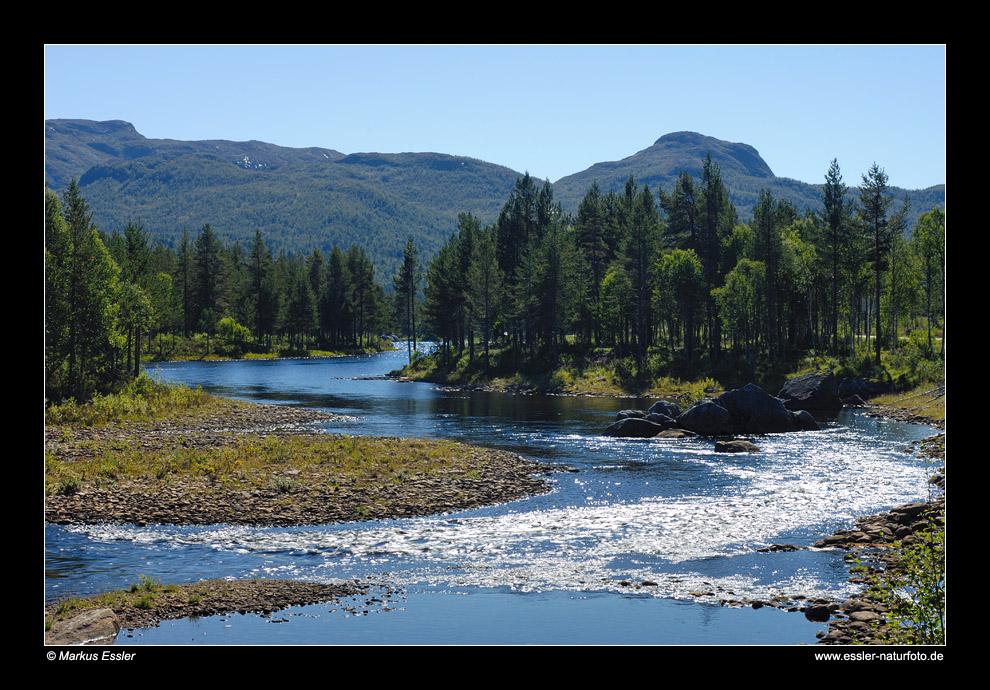 Flusslandschaft an der Otra • Aust-Agder, Norwegen (81-21837)