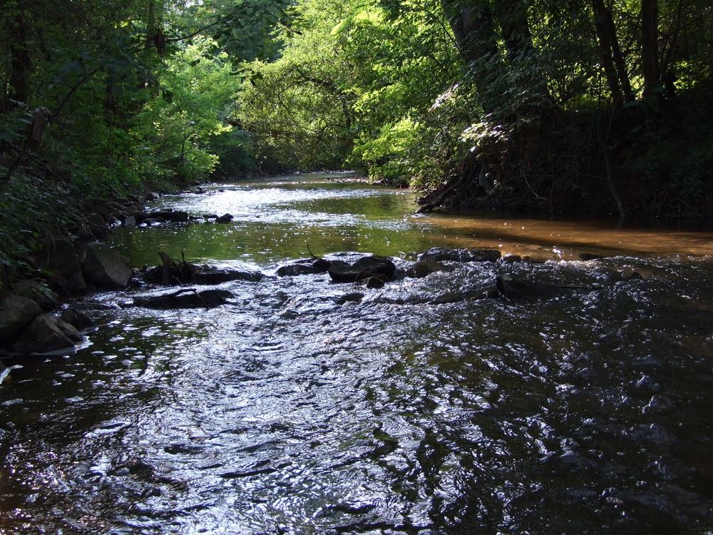Flußlauf