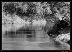 FlußRomantik 1...River Romance 1...1 rivière romantique...