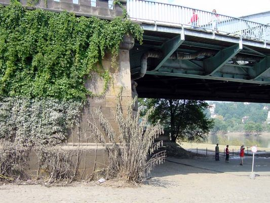 Flut 2002 in Dresden