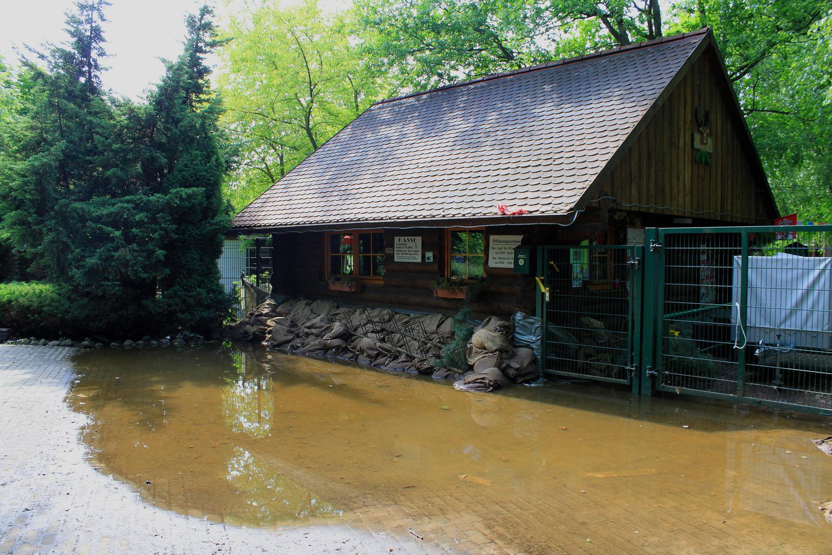 Flutschaden Wildpark 1