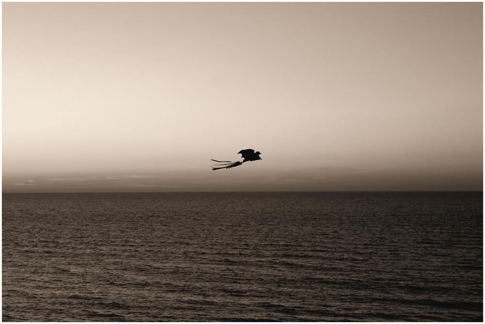 Fly away...II