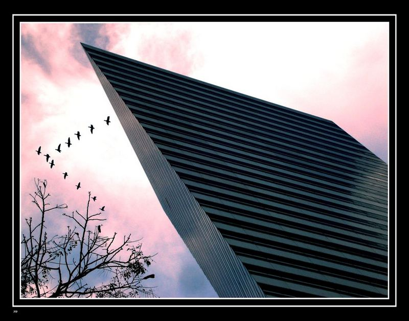 Flying Geese over D Evil Building ii