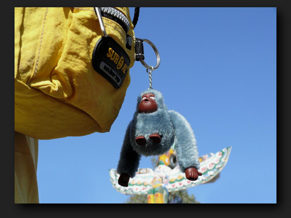 """""""flying"""" monkey"""