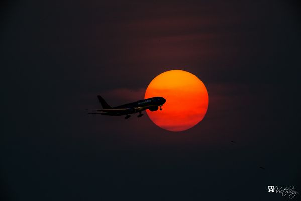 Flying through the sunset