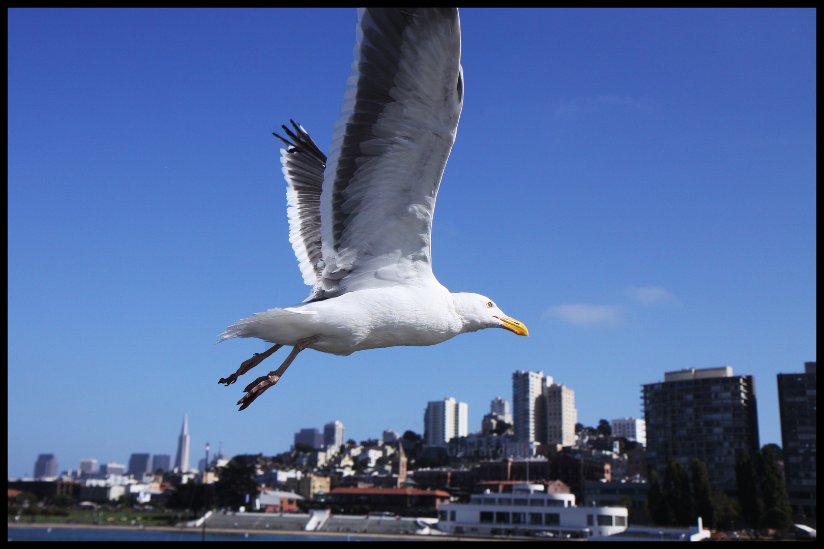 Flying to San Fransisco