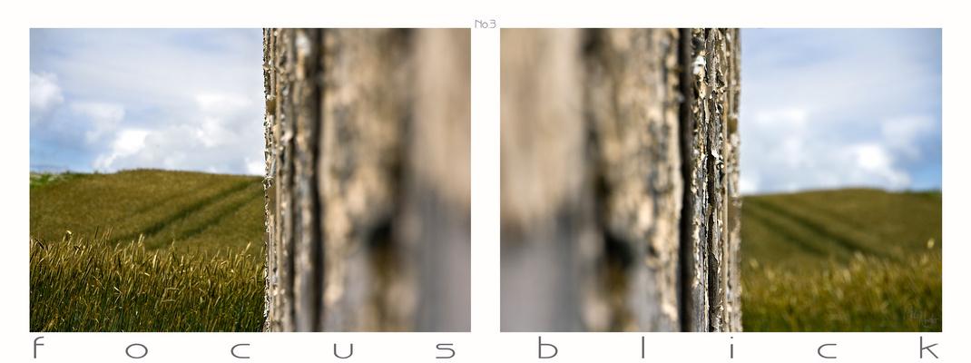 focusblick no.3