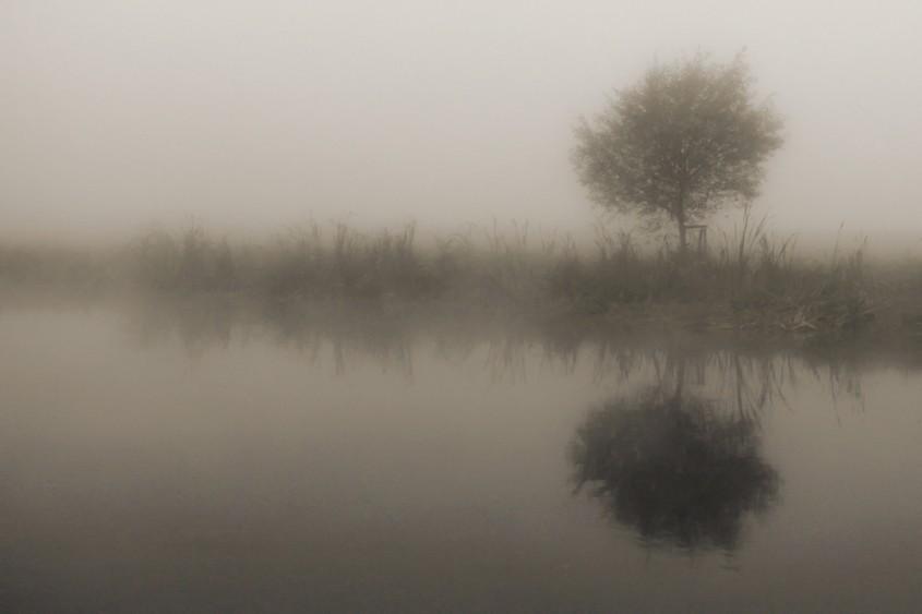 *fog*