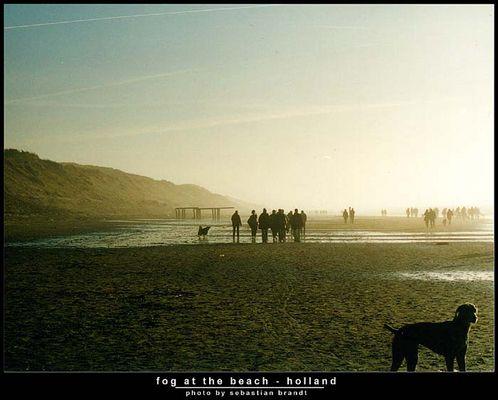fog at the beach - holland series