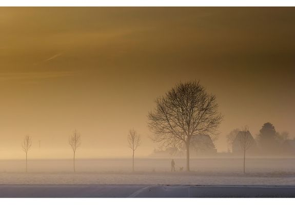 Fog I