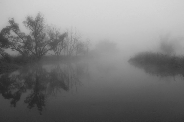 *fog II*