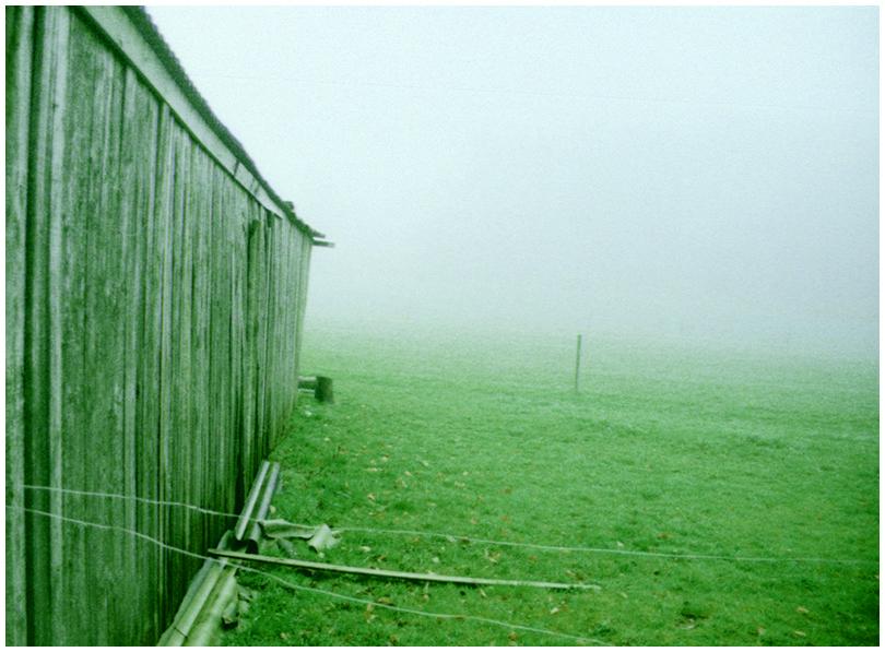 Fog II
